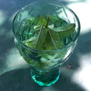 Aromatisches Minzwasser