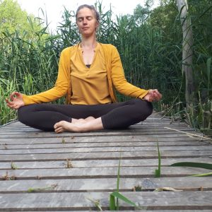 Ayurveda Yoga Meditation