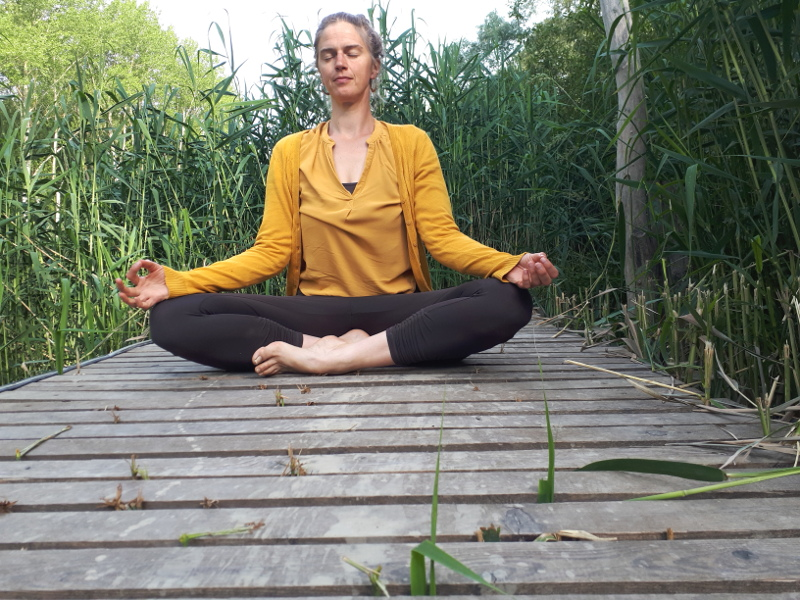 Ayurveda Yoga Meditation
